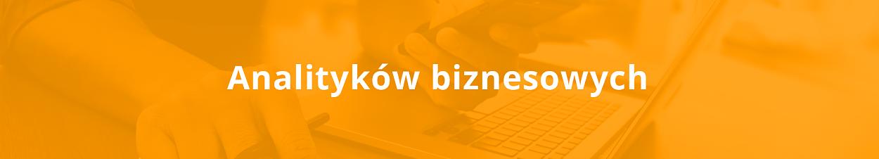 analityk biznesowy.png [312.07 KB]